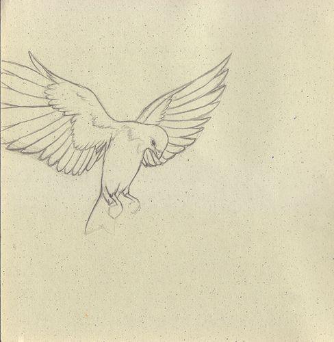 delicate bird sketch - Google Search