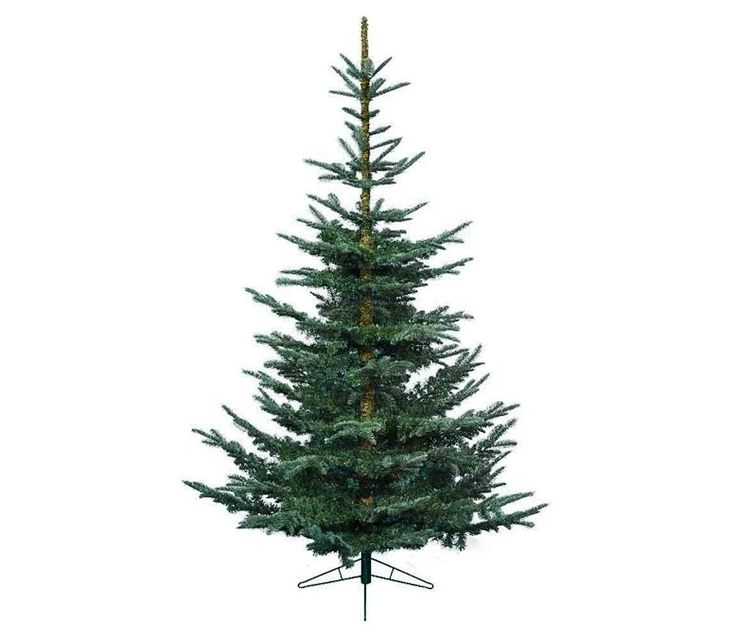 everlands nobilis fir christmas tree - Realistic Christmas Trees