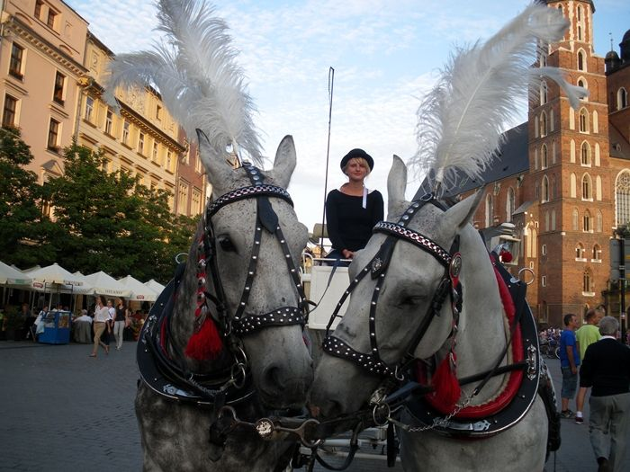 Krakow - love - inspiration - animals - horses - market square
