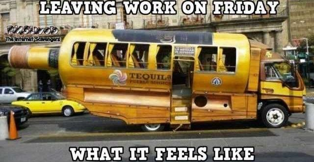 Funny Internet nonsense – Hilarious TGIF picture collection | PMSLweb