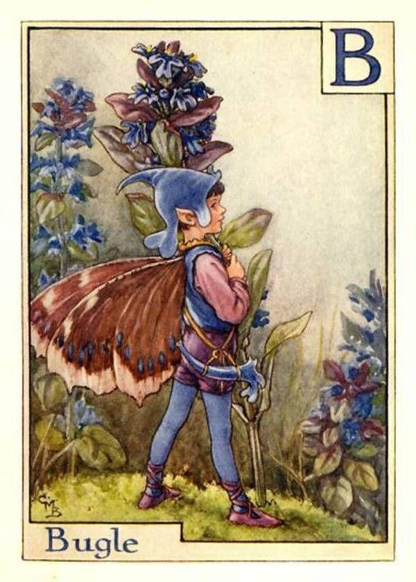 """Bugle"" художник: Сесиль Мэри Баркер, арт, фея, Живу́чка ползу́чая (лат. Ajúga réptans), серия: Alphabet Fairies"