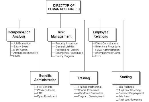 human resources department structure hr staff