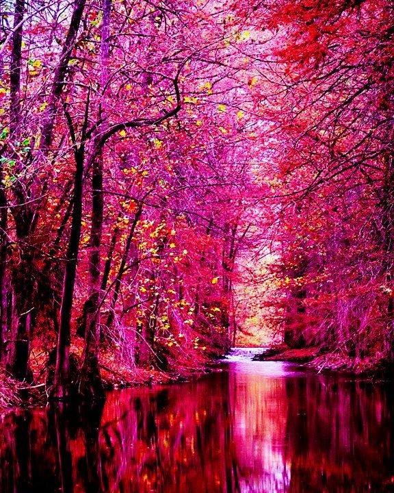 Glorius Nature. Beautiful