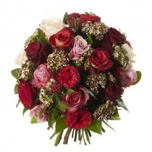 Sweet Avalanche Roses, Keano Roses, Vampire Roses, Black Bacarra Roses and Deep Water Roses.