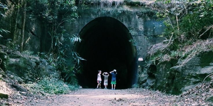 The Old Train Tunnel in Dularcha National Park