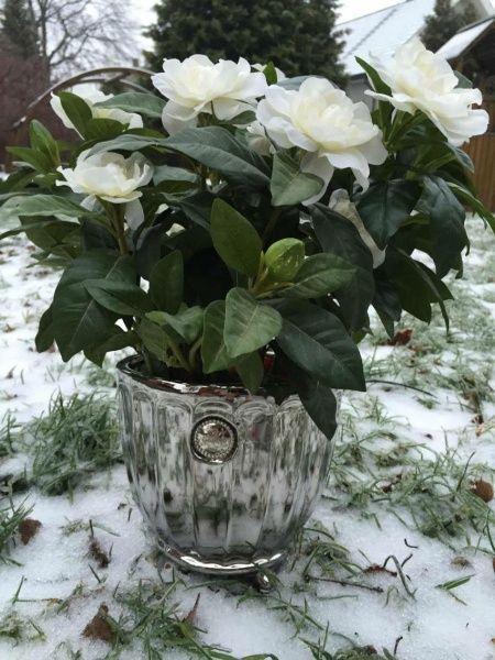 Nydelig sølvfarget litt større blomsterpotte fra Lene Bjerre. Passer perfekt med 2 av våre kunstige Gardenia'er som vist på bildet. Også perfekt for vår kunstige