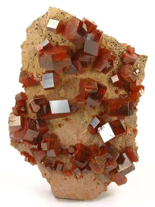 Discrete crystals of lustrous, reddish-brown vanadinite, Morocco - 9.2 x 6.8 x 2.7 cm |#Geology *Photo : © irocks visit : http://www.geologyin