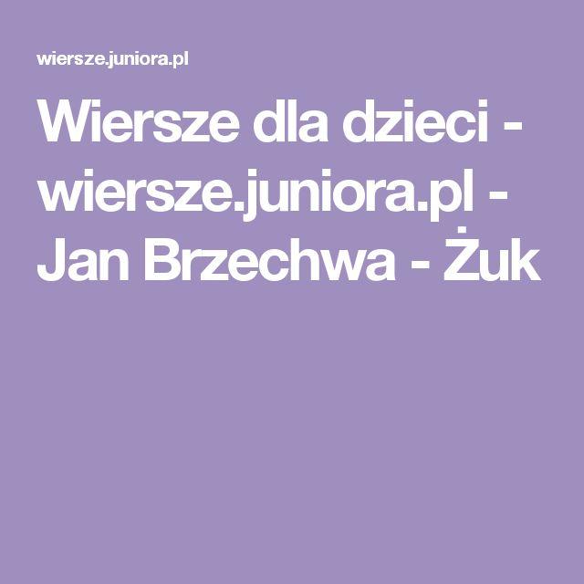 Wiersze dla dzieci - wiersze.juniora.pl - Jan Brzechwa - Żuk