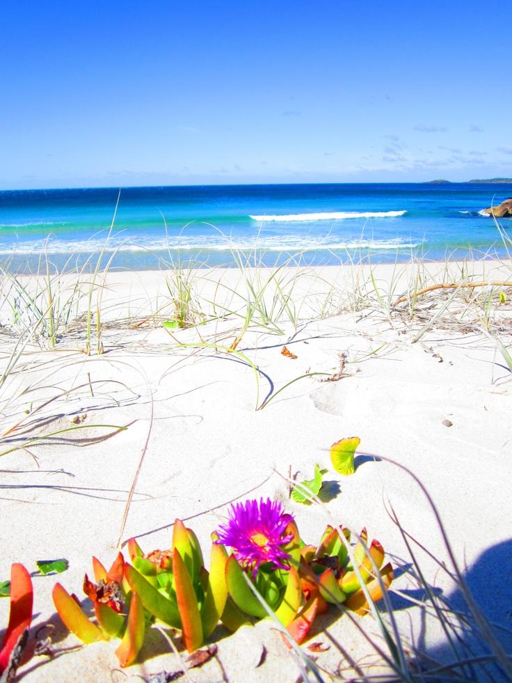 Zenith Beach, Shoal Bay, NSW