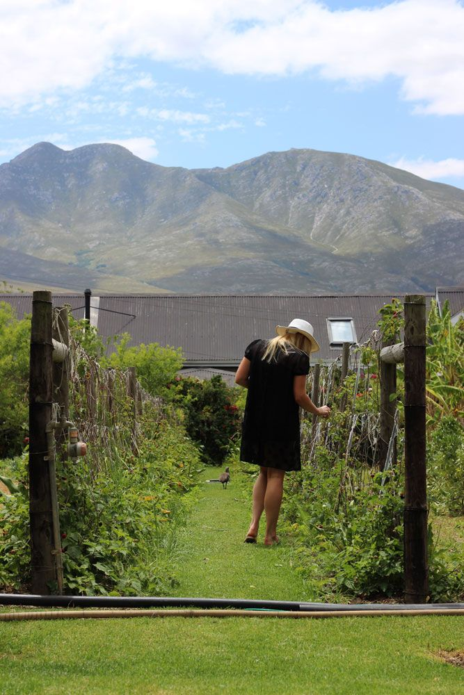 How to spend a weekend in Stanfort