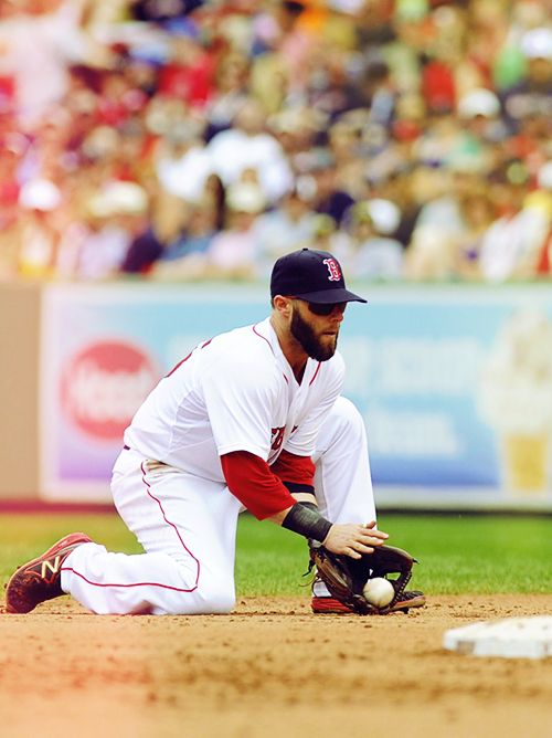 Dustin Pedroia  Red Sox