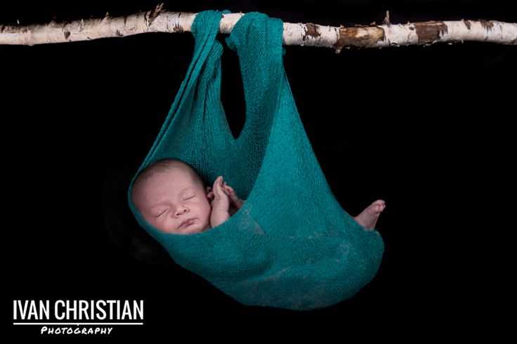 Another shot of Baby Aaron hanging from a branch - Ivan Christian Photography