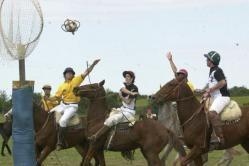 El Pato es un deporte ecuestre originario de Argentina, declarado oficialmente…