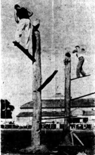 """1947 Woodchopping at Maryborough Show. Pictured left is Vic Summers of Gunalda, with his brother Bill as """"pacemaker"""" beating his own world's record time in a great exhibition of tree felling."""