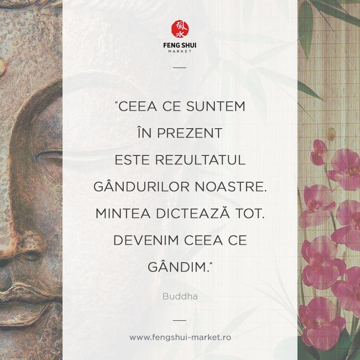 Ceea ce suntem in prezent este rezultatul gandurilor noastre. Mintea dicteaza tot. Devenim ceea ce gandim. Buddha.  Viziteaza www.fengshui-market.ro magazinul de produse feng shui din Arad.