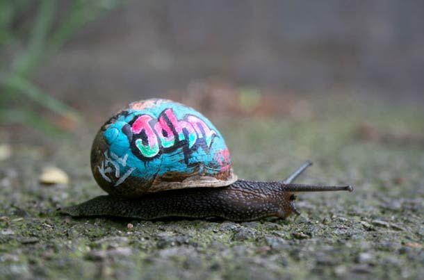 Le street art miniature s'invite dans les rues de nos villes.