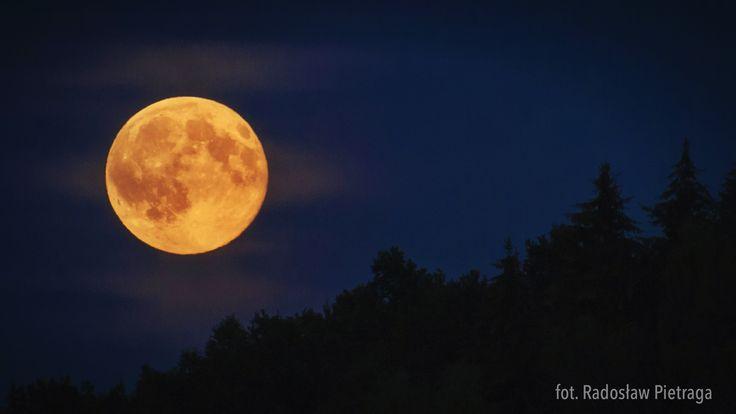 Co to jest Pełnia Księżyca? Po przebyciu połowy swojej orbity okołoziemskiej, Księżyc znajduje się na wprost Słońca...