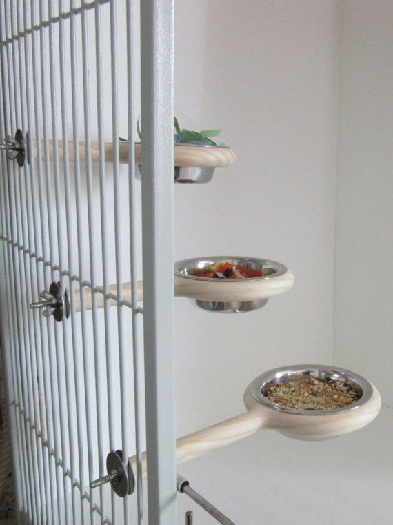 Snack-N-Perch bird feeder dish for parrots and sugar gliders