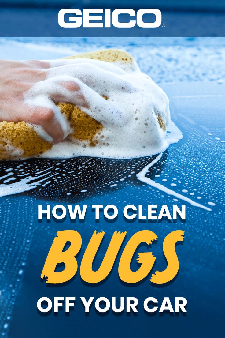 Want an easy way to get the bugs off your car? Here's how