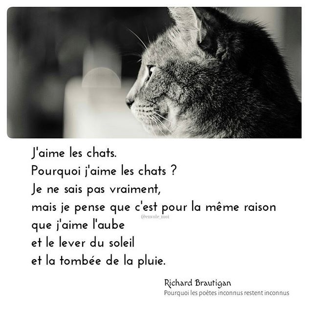 529 best images about citations extraits lectures motivation sagesse optimisme amour bonheur - Pourquoi un coup de soleil gratte ...