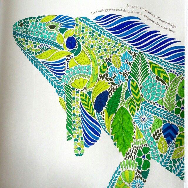 Millie Marotta Tropical Wonderland Joanna BasfordAdult ColoringColoring BooksPrismacolorAnimal