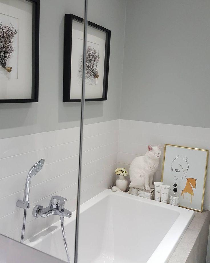White bathrom, white Edie :-))  #Edek #EdTheWhiteCat #Ed #cats #whitecat #catofinstagram #instacat #whiteandgrey #bathroom #homedecor #greybathroom
