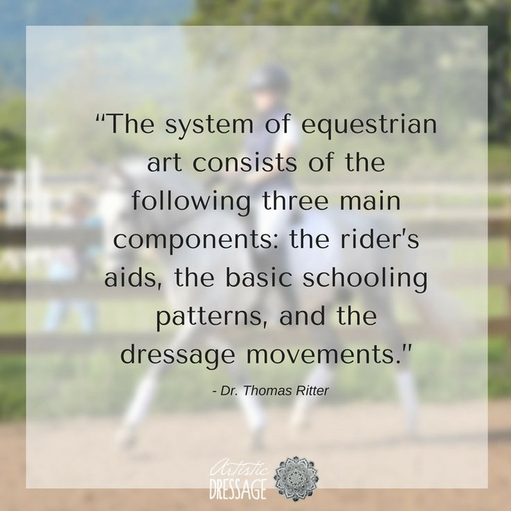 """""""The system of equestrian art consists of the following three main components: the rider's aids, the basic schooling patterns, and the dressage movements."""" - Thomas Ritter artisticdressage.com"""