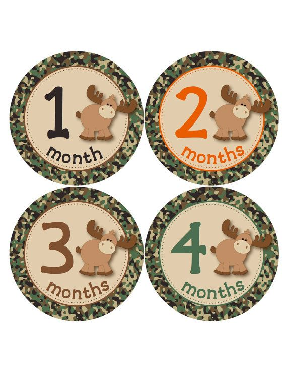 Baby Boy Monthly Stickers  Moose Hunting Camo by BuddhaBellies, $9.00