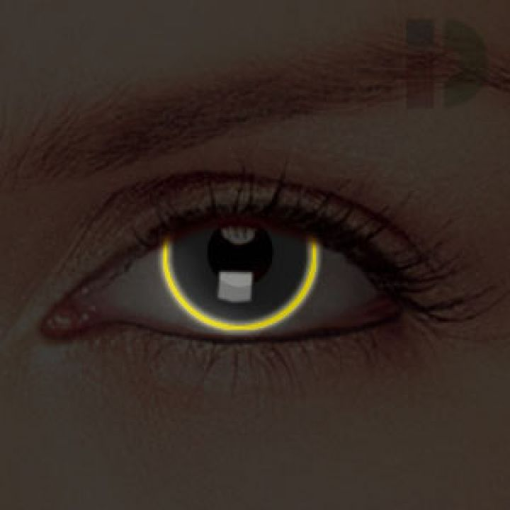 halloween contacts florida