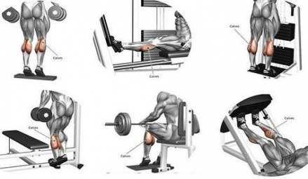 new leg training women build muscle 68 ideas training