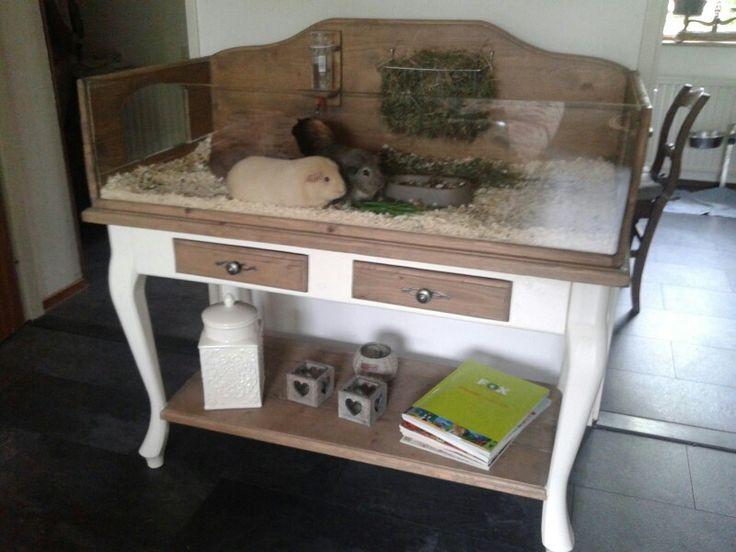 33 besten hamsterk fig diy bilder auf pinterest schweine haustiere und kaninchen. Black Bedroom Furniture Sets. Home Design Ideas