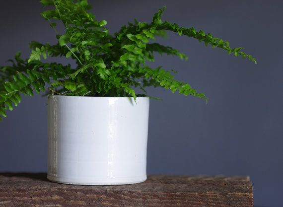 White Indoor Planter. Simple Modern Plant Pot. By Vitrifiedstudio Part 73