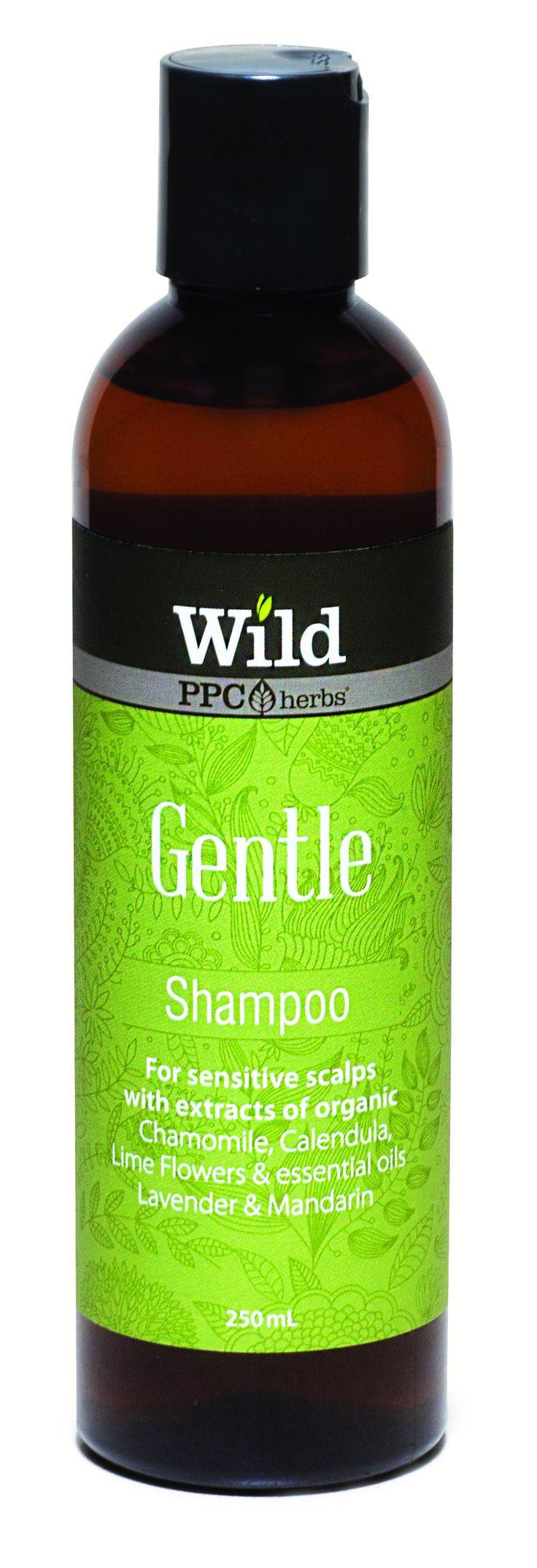 Wild PPC | Gentle Hair Shampoo for Sensitive Scalps- 250ml