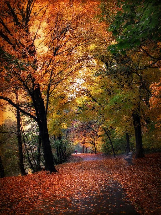 ✯ Autumn Promenade