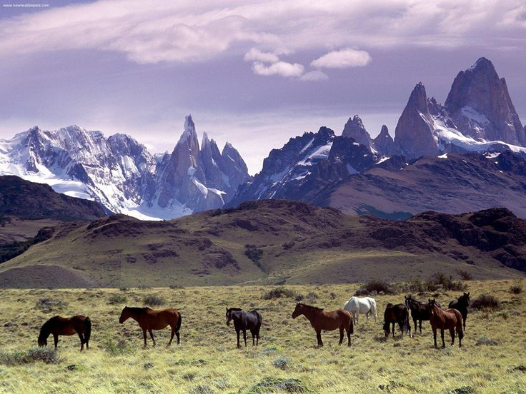 Cross the Andes on horseback in Argentina Patagonia.