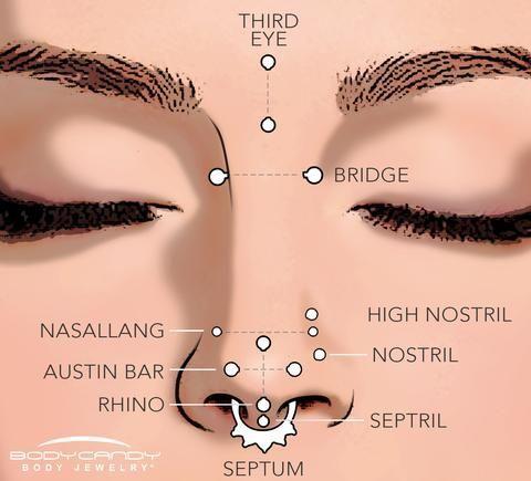 Encyclopedia Of Body Piercings Standard Nostril Nose