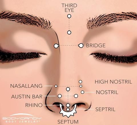 A guide to the different types of nose piercings - Multiple and symmetrical piercings of the nose are trending right now, BodyCandy wants to help you make sure you know your type!  Septum, high nostril, bridge? What do you want?