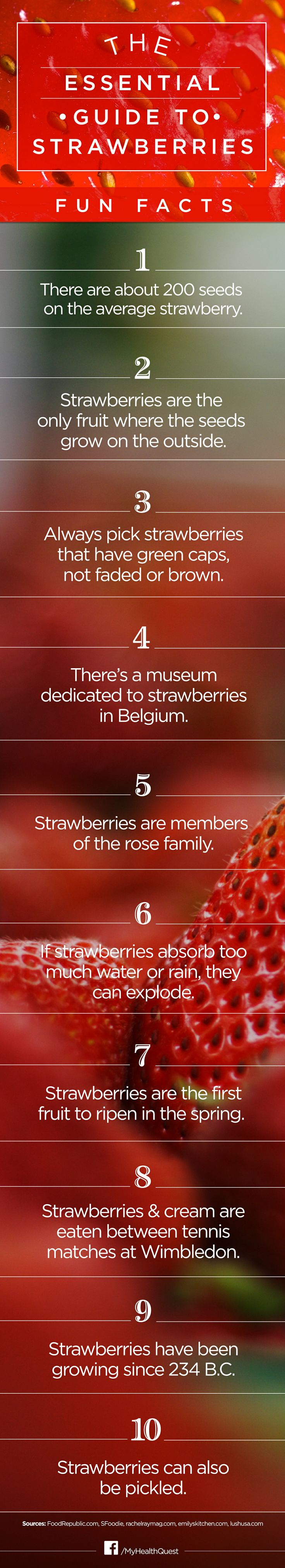 17 best images about strawberry unit on pinterest for Interesting facts about strawberries