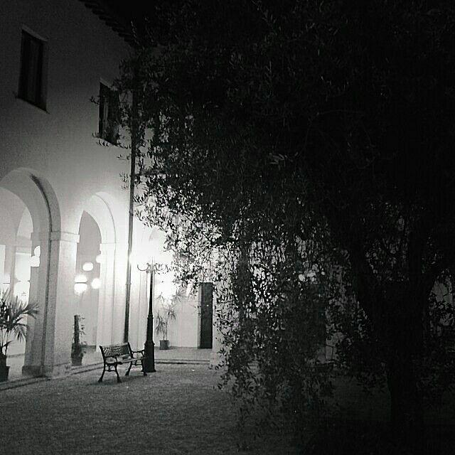 """""""L'ombra si distende su un tappeto di foglie, fasci di luce trafiggono i rami, e la panchina vuota rimembra gli incontri...e intanto, fiduciosa, attende..."""" (cit.)"""