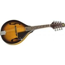 Johnson Mandolin $42475