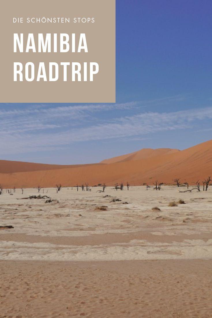 Auf einer der spannenden Namibia Rundreisen mit Berge & Meer erlebt ihr unberührte Landschaften und Tiere in ihrem natürlichen Lebensraum. Es erwartetn euch unvergessliche Erlebnisse mit der hier lebenden Tierwelt, wie Giraffen, Raubkatzen, Nashörnern und vielen anderen Arten, beispielsweise im Etosha National Park. Außerdem die Dünen von Sossusvlei und ein wunderschönes Unesco Welterbe: Die berühmten Felsmalereien von Twyfelfontein. Alle Infos auf lilies-diary.com