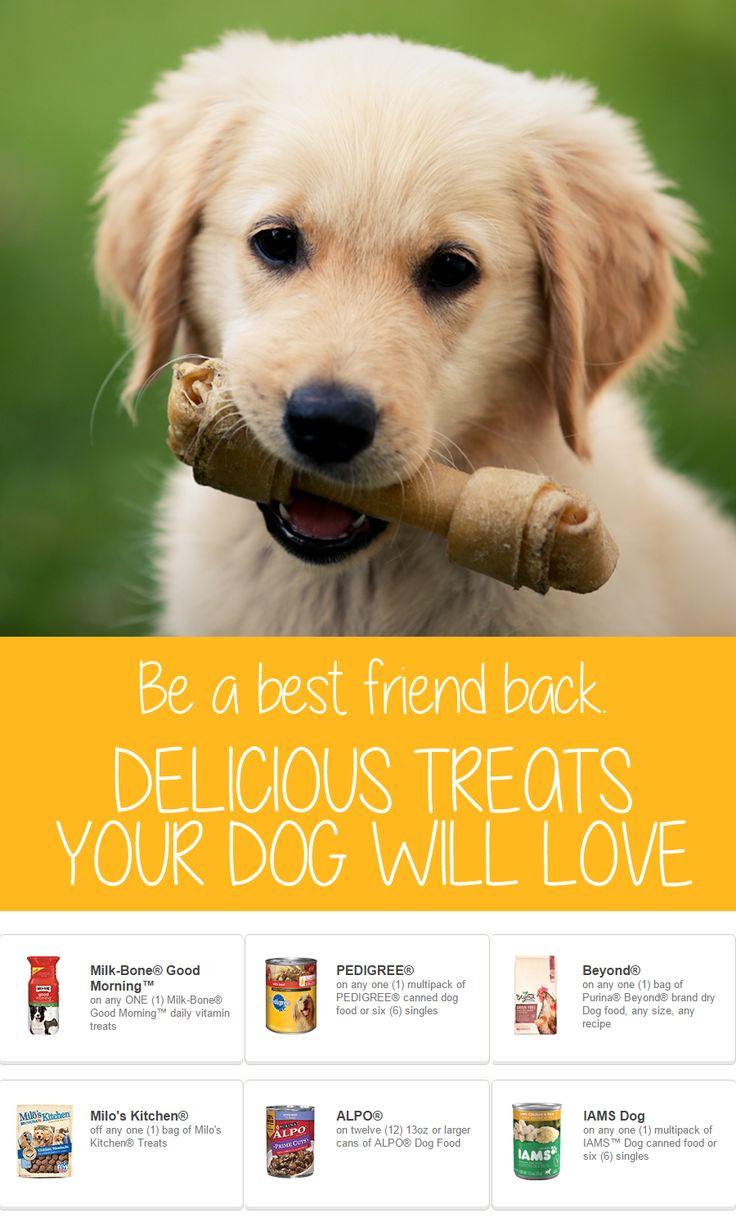 Dog food coupons printable purina