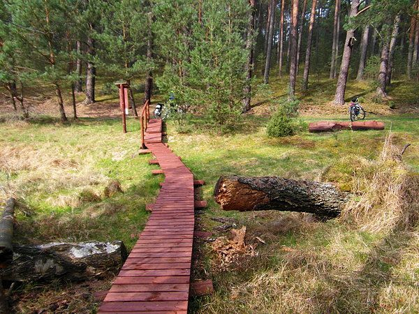 Pętla Lipnickiego - Park Narodowy Bory Tucholskie