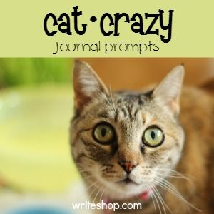 Crazy for cats   Journal prompts for kids