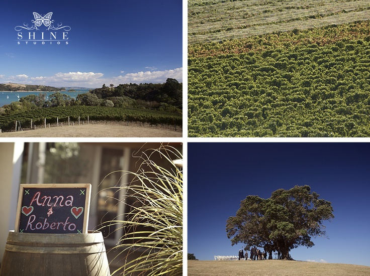 It was a gorgeous day on the vineyard when Anna and Roberto came to get married... via Shine Studios