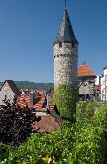 bad-homburg | Bad Homburg: Bilder und Fotos aus Bad Homburg- 359x550 - Autor: Martin ...