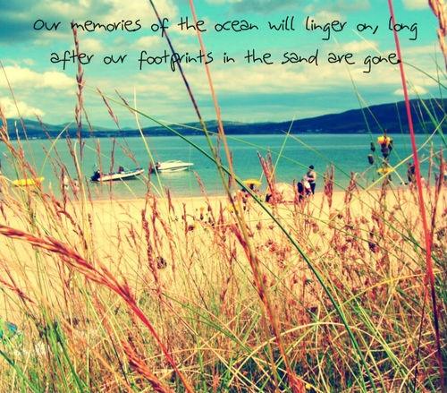 Memories of summer...