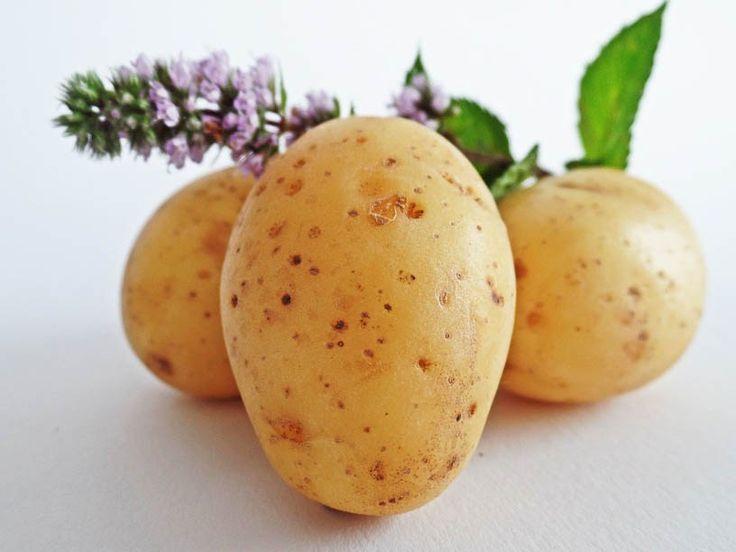 Ukochany ziemniak i jak z nim postępować aby nie chorować!  #ziemniak #zdrowie #kulinaria #solanina