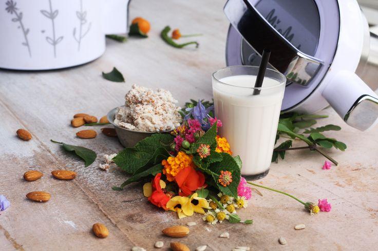 Tengo intolerancia a la lactosa ¿Puedo tomar todos los tipos leche vegetal? Claro. Con MioMat, puede preparar leche fresca de almendras, avena, coco, soya o arroz. Puede disfrutar el rico sabor de la leche vegetal, dejando de lado las consecuencias negativas que trae la Intolerancia a la lactosa o la alergia a la leche.