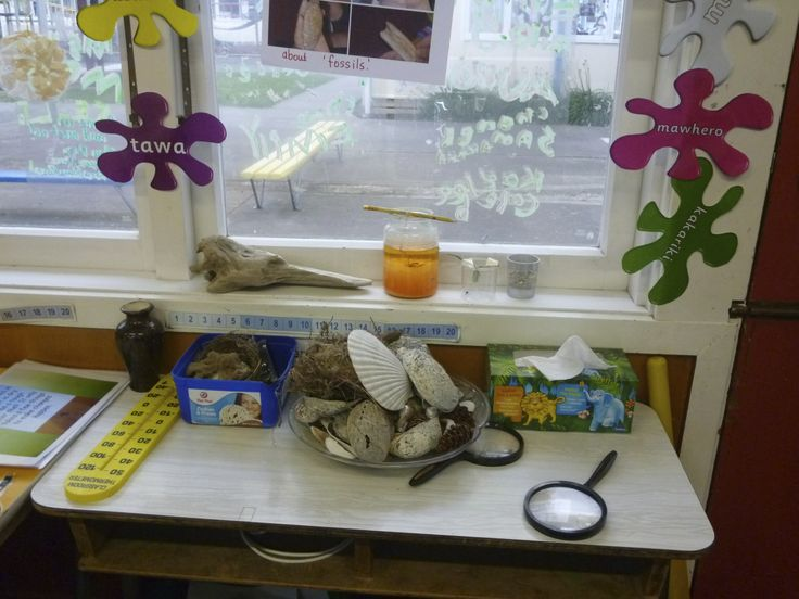 Our science table.This is just a small example as we had hydroponics growing and books, shells, rocks, items of interest bought in by the children, birds nests, crystals growing and anything that looked mildly interesting!
